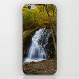 Crabtree Falls iPhone Skin