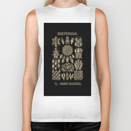 """""""Bryozoa"""" from """"Art Forms of Nature"""" by Ernst Haeckel Biker Tank"""