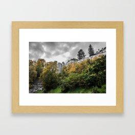 Cesky Krumlov Trees Framed Art Print