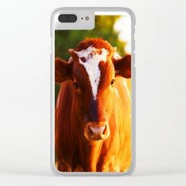Curious Orange Clear iPhone Case