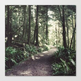 Every Journey Begins Within [1:1] Canvas Print