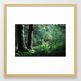 Evening Garden Glimpse Framed Art Print