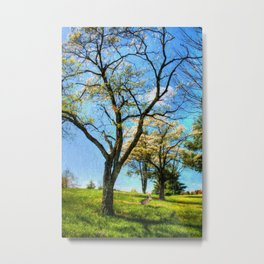 Under the Dogwoods Metal Print