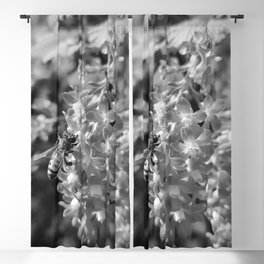 Bee and Blood Currant Ribes Sanguineum bw Blackout Curtain