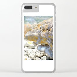 Rocky Tocky Clear iPhone Case
