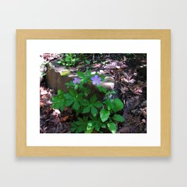 Flowers by the Falls Framed Art Print