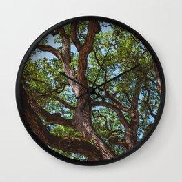 Texas Cottonwood Wall Clock