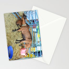 Family of Domestic Goats Stationery Cards