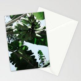 Wild Bananas Stationery Cards