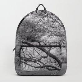 Hairy Man Road - Brushy Creek- Round Rock, Texas - Black and White Backpack