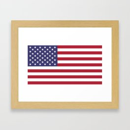 USA flag - Hi Def Authentic color & scale image Framed Art Print
