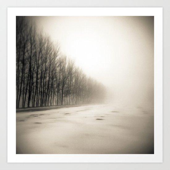 Trees in mist Art Print