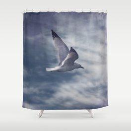 Jonathan Livingston Seagull Shower Curtain