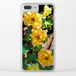 Rosy Sunrise Clear iPhone Case