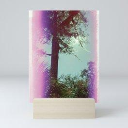 Spanish Moss Blowing in the Breeze - 35 mm film photograph - Light Leak Mini Art Print
