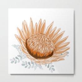 Apricot Waratah - Australian wildflower Metal Print