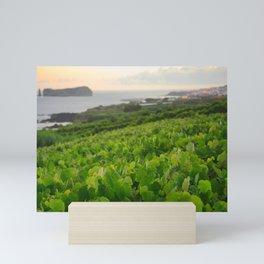 Grapevines and islet Mini Art Print