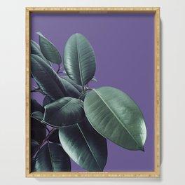 Ficus Elastica Ultra Violet #2 #decor #art #society6 Serving Tray