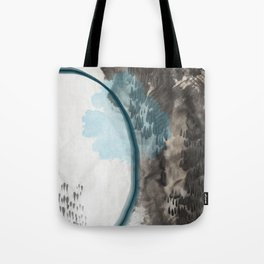 the light falls while the fishes swim Tote Bag