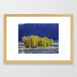 The Colors of Lamar Valley, Yellowstone 3 Framed Art Print