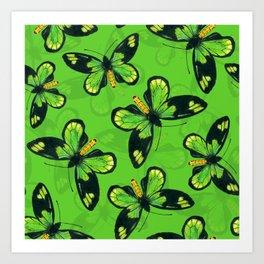 Queen Victoria' s birdwing butterfly Art Print