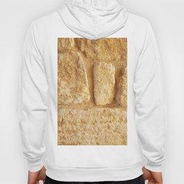 Ancient Minoan Stone Hoody