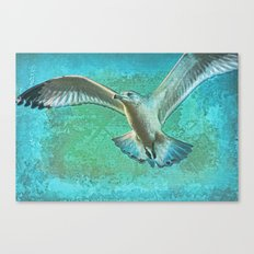 Soaring On Lifes Air Drafts Canvas Print