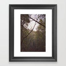 T r e a s  Framed Art Print
