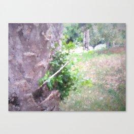 The Raanana Park 3 Canvas Print