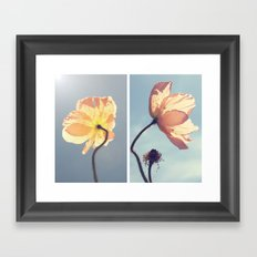 Iceland Poppies Framed Art Print