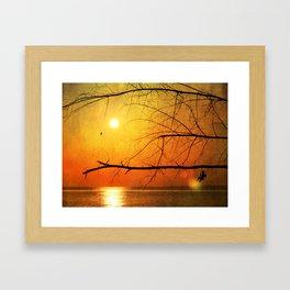 Free to Dream Framed Art Print