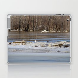 Winter on the Maumee II Laptop & iPad Skin