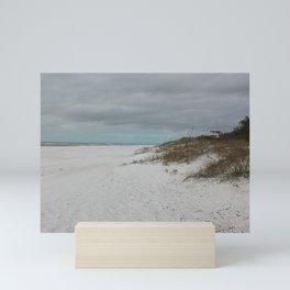 Sea, Sand and Storm Mini Art Print