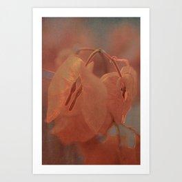 Sunny Bougainville( glow) Art Print