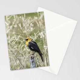 Yellow-headed Blackbird, No. 2 Stationery Cards
