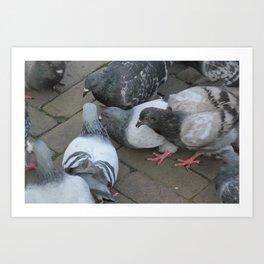 Pigeon Party! Art Print