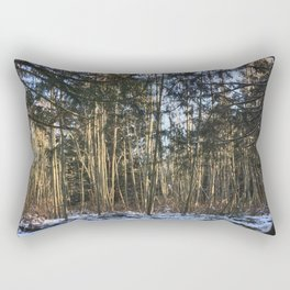 Winter at Home Rectangular Pillow