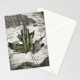 Silver maple -  Érable argenté - Acer saccharinum Stationery Cards