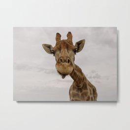 hey love! | my favorite safari animal | giraffe in Stellenbosch South Africa | photography print Metal Print