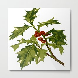 Holly Christmas Red Berry Metal Print