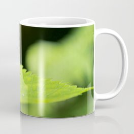 Tiny Butterfly Coffee Mug