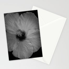 Hawaiian Dreams in Black and White  Stationery Cards
