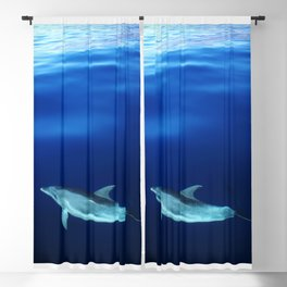 Dolphin and blues Blackout Curtain