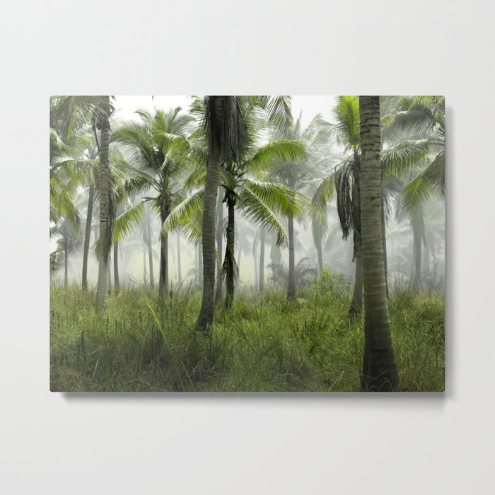 Foggy Palm Forest Metal Print