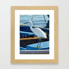 Little Egret Framed Art Print