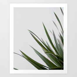 Botanical, Leaves Art Print