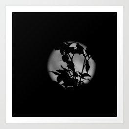 Moon silhouette Art Print