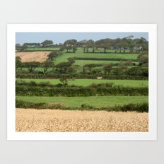Fields of Devon Art Print