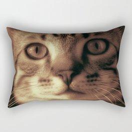 Kitten In The Window Rectangular Pillow