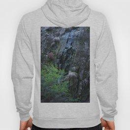 Mysterious wet rocks in dark forest Hoody